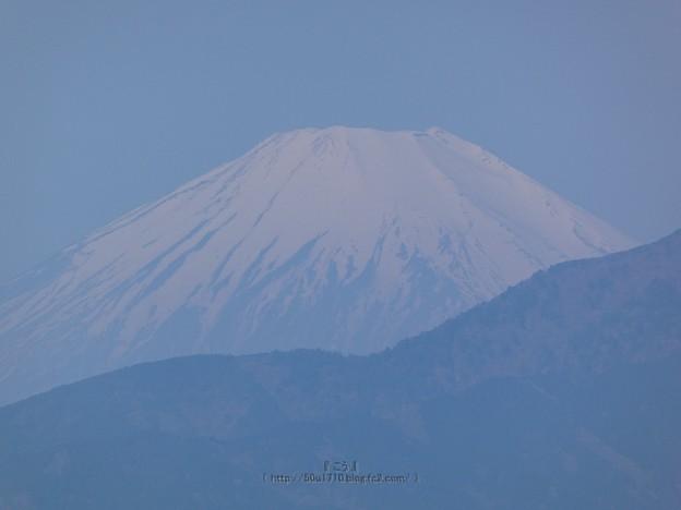210411-富士山 (2)
