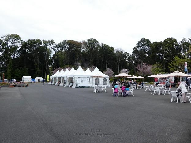 210402-里山ガーデン (47)