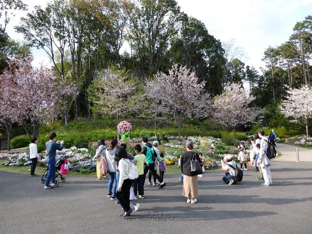 210402-ガーデンベアグリーティング4回目@里山ガーデン (1)