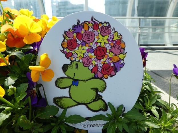 210410-ガーデンベアフォトスポット@横浜駅東口 (3)