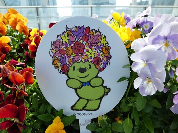 210410-ガーデンベアフォトスポット@横浜駅東口 (4)