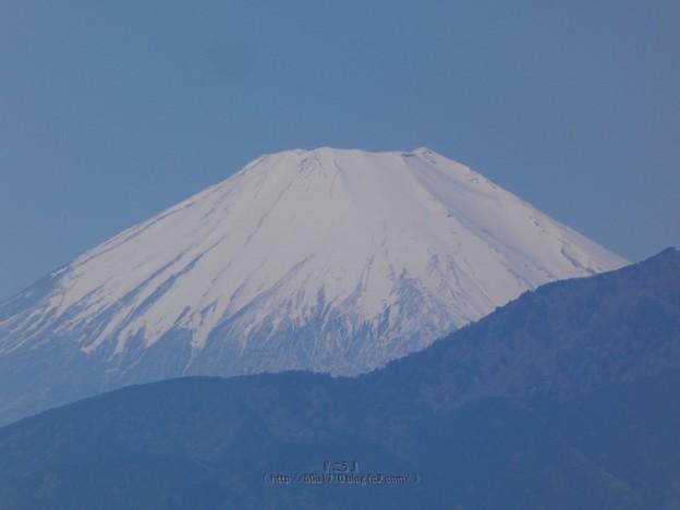Photos: 210426-富士山 (2)