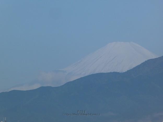 210430-富士山 (1)