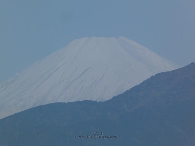 Photos: 210430-富士山 (2)