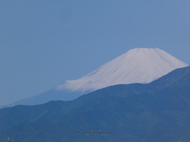 210503-富士山 (2)