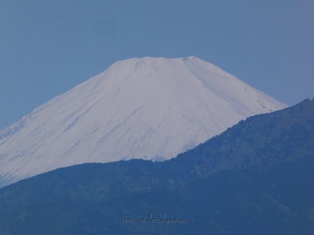 210503-富士山 (3)