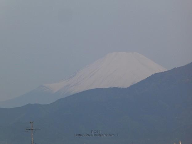 210504-富士山 (1)