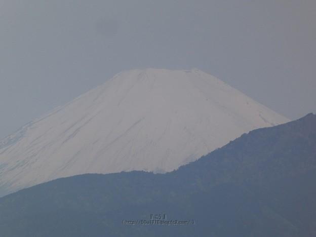 210504-富士山 (2)