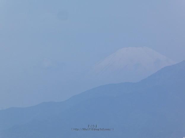 210508-富士山 (1)