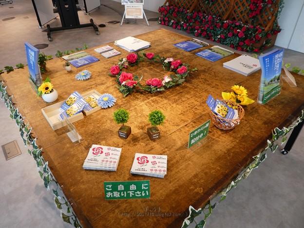210512-横浜国際園芸博覧会PR@横浜市役所2階 (46)