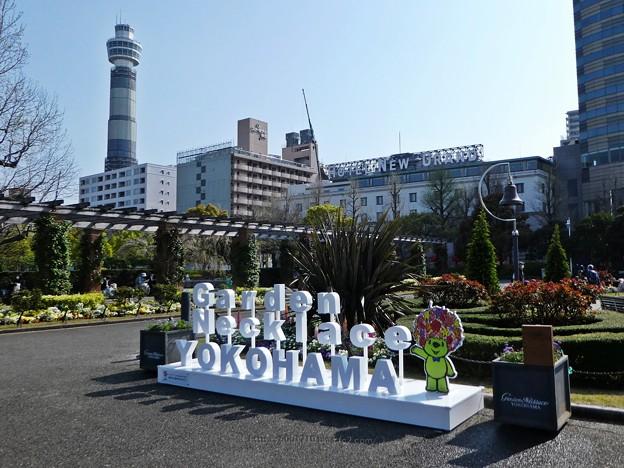 210326-ガーデンベアフォトスポット@山下公園 (9)