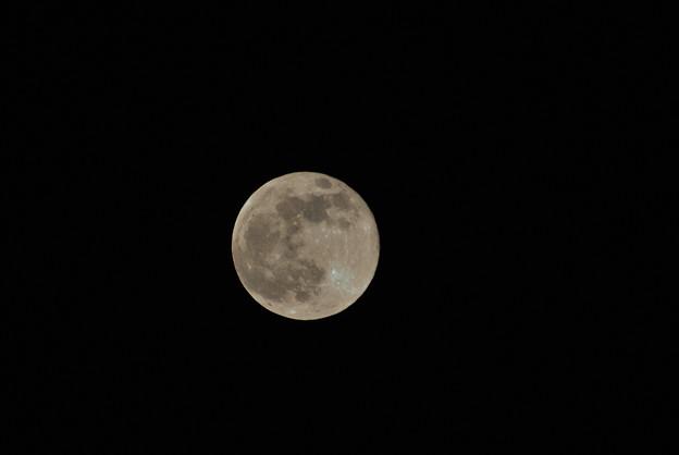 満月(Nikon1 V1)