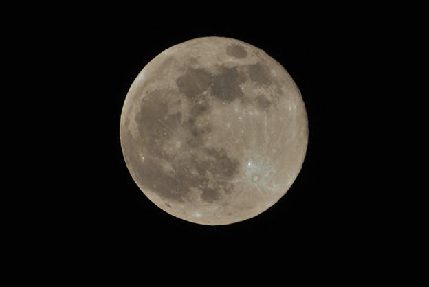 満月(Nikon1 V1)トリミング