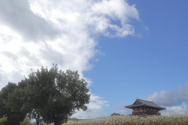 平城宮跡歴史公園07