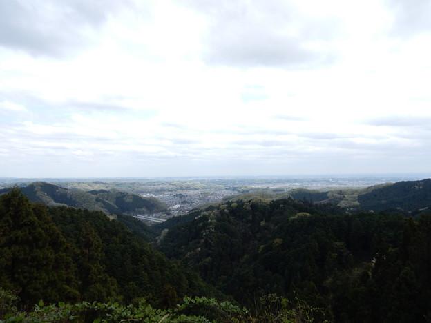 滝ノ沢林道から