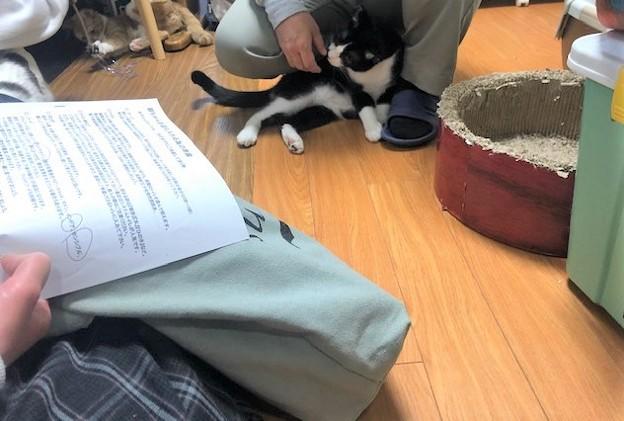 Photos: リもろこし210228