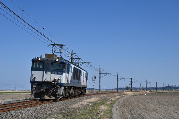 Photos: EF641010 単機回送