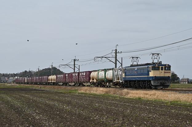 貨物列車 (鹿島貨物) EF652087