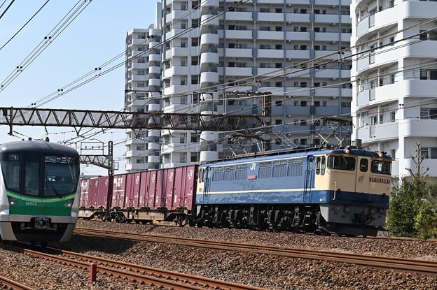 貨物列車 (EF652087) 見事にかぶった