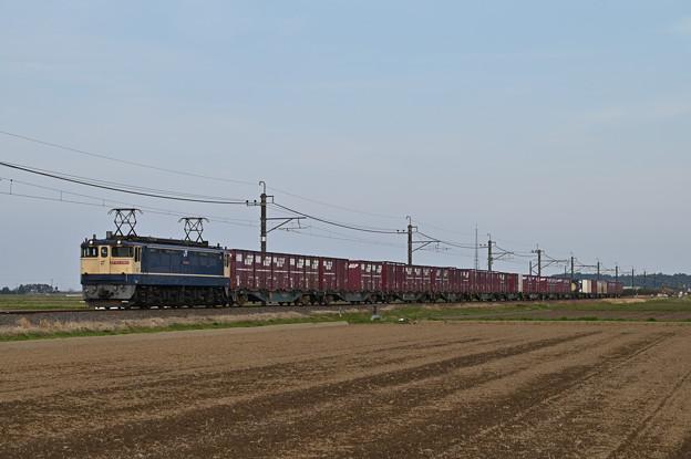 貨物列車 (EF652065)