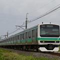 成田線普通列車 (E231系)