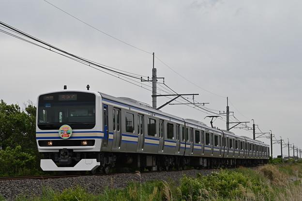 成田線 (我孫子~成田) 120周年記念列車 854M
