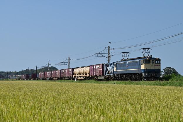 貨物列車 1093レ (EF652067)