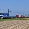 Photos: 貨物列車 1094レ (EF210-111)