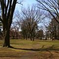 Photos: 平和公園1