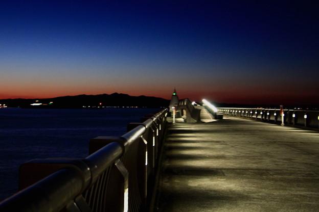 Photos: 港の夜景