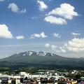 Photos: 新緑進む八甲田山