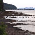 Photos: 夏泊半島東岸の海辺