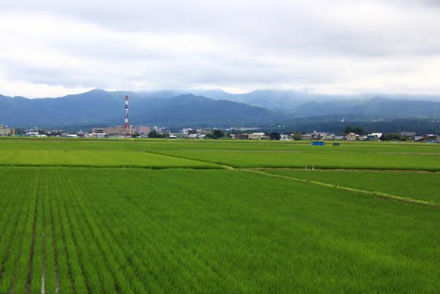 Photos: 田園風景2