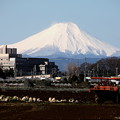Photos: 雨上りの朝の富士山