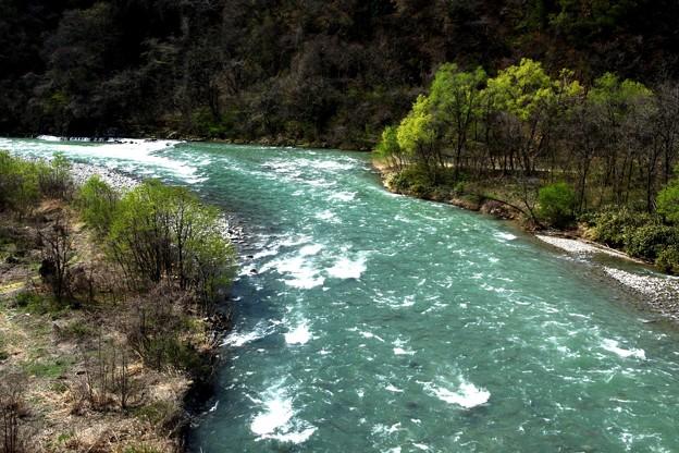 春の利根川の上流の流れ