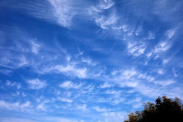 今日の空 巻雲