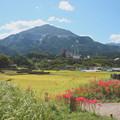 Photos: 寺坂棚田の彼岸花咲く風景