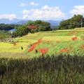 Photos: 寺坂棚田の秋風景