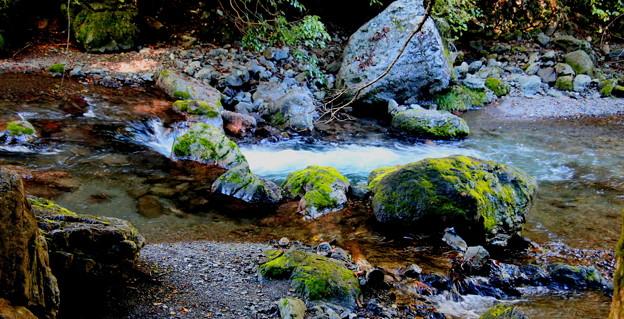 赤平川の渓流