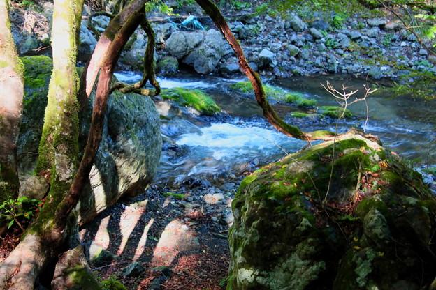 赤平川の渓流2