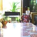 居間のテーブルと水槽