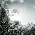 Photos: 透明な空
