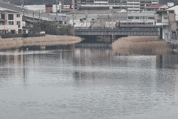 汽水域の風景