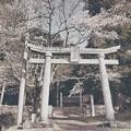 Photos: 敷名八幡神社