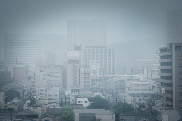 新幹線が見える風景