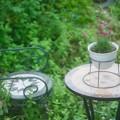 雨のテーブル