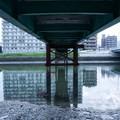 Photos: Under the bridge