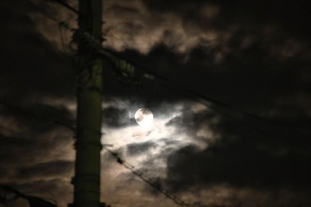 雲と電信柱