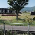 旧豊後森機関庫2(転車台)