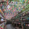 Photos: カエル寺の風鈴1
